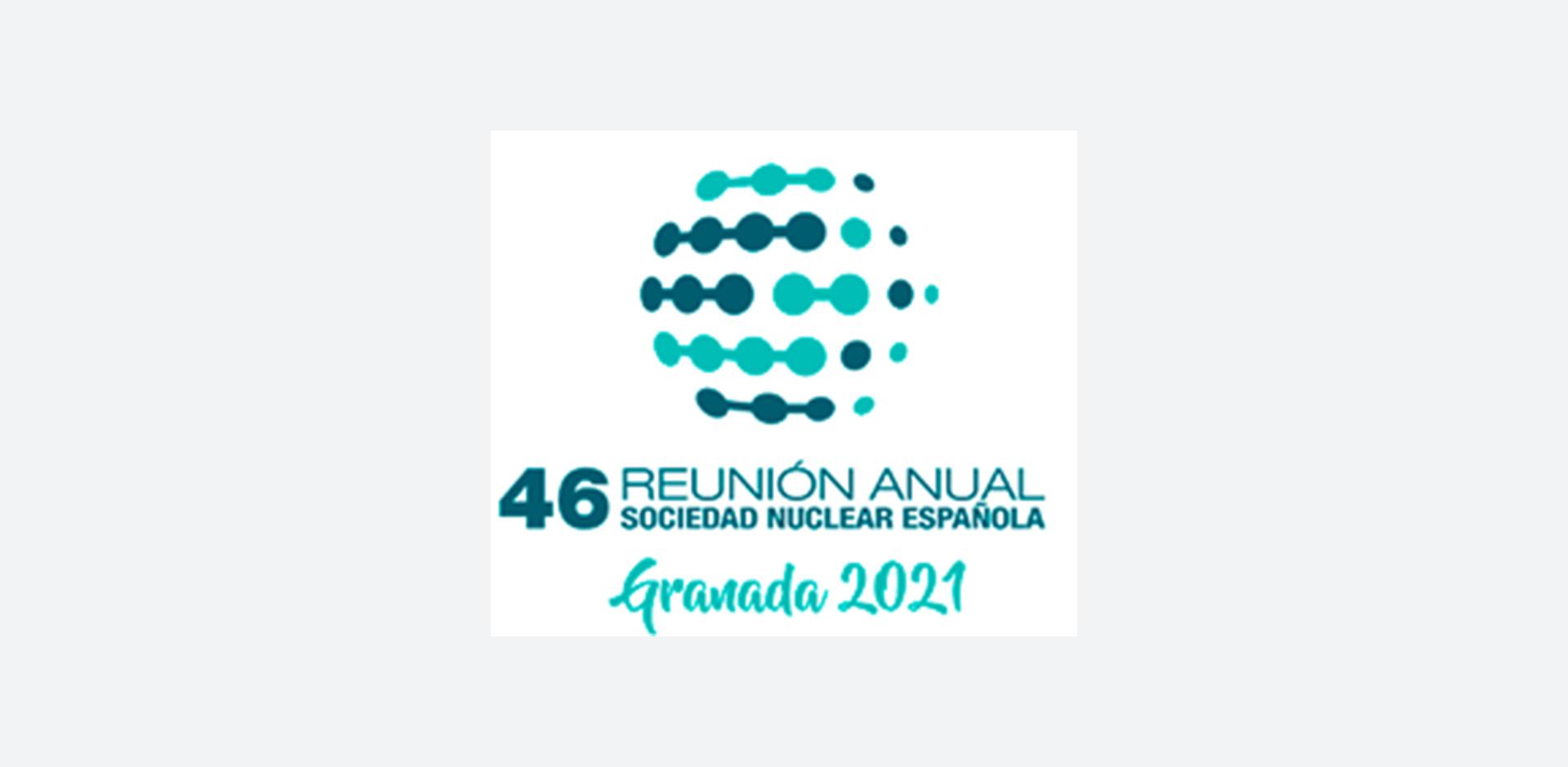 INGECID participa en la 46ª Reunión Anual SNE